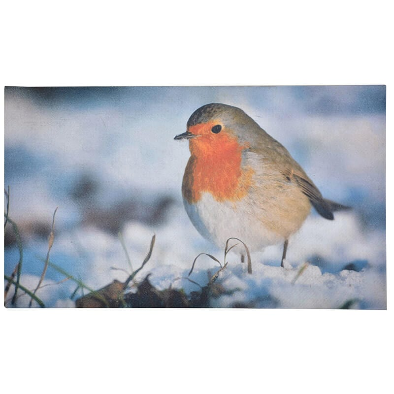 Winter Robin Doormat