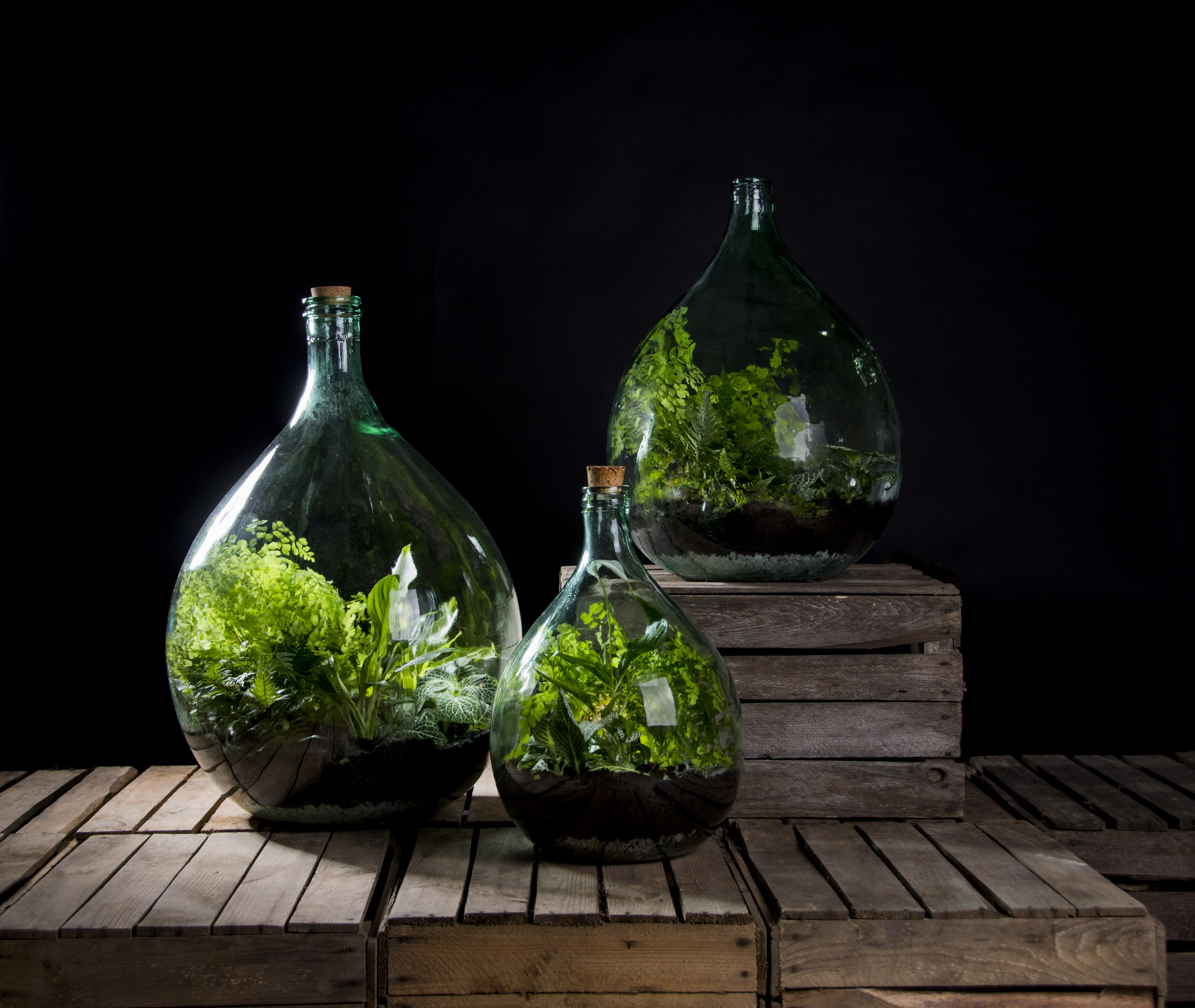 Terrarium Bottle W Tools Glass Green Small Esschert Design Usa