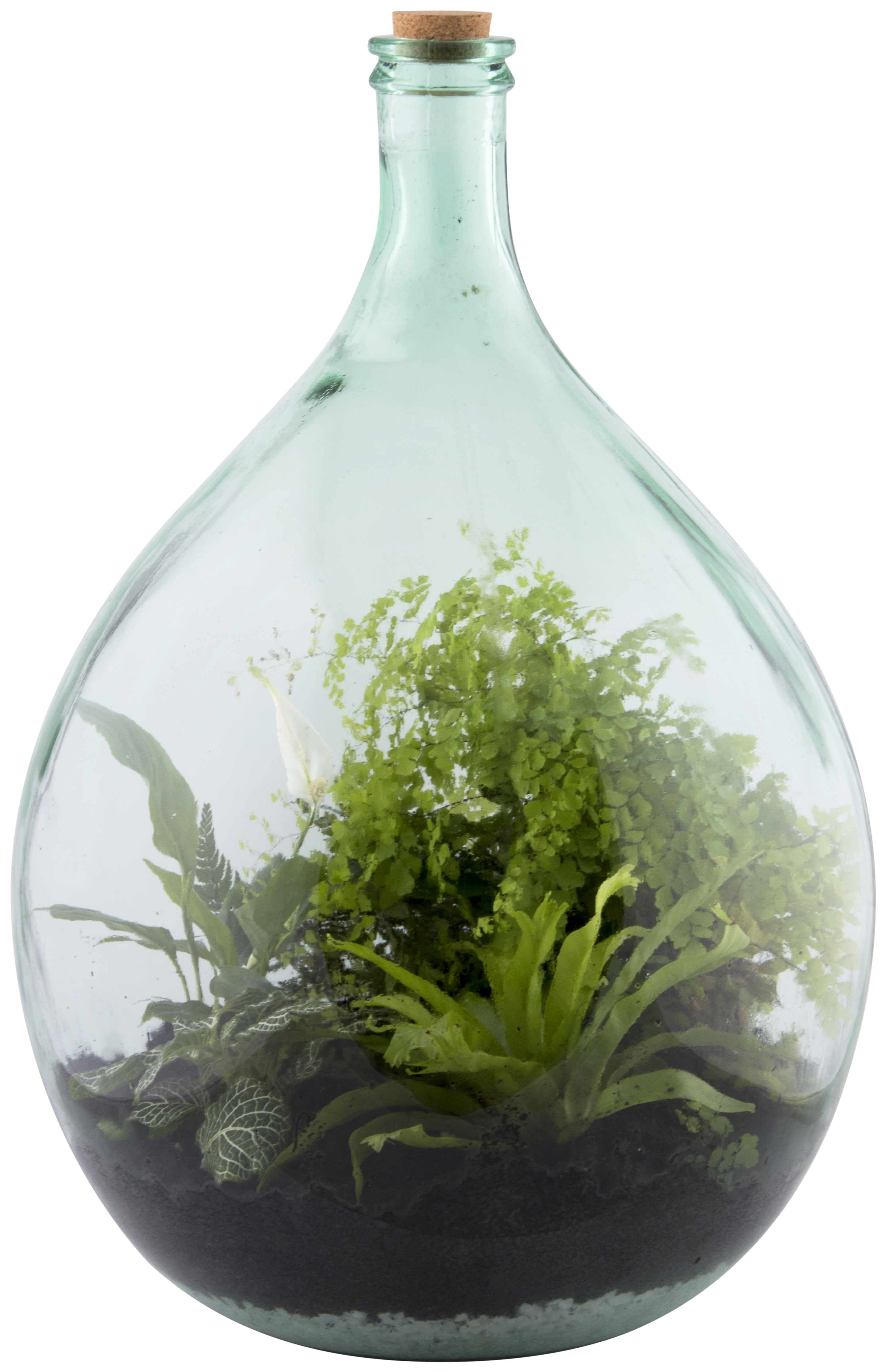 Terrarium Bottle W Tools Glass Green X Large Esschert Design Usa